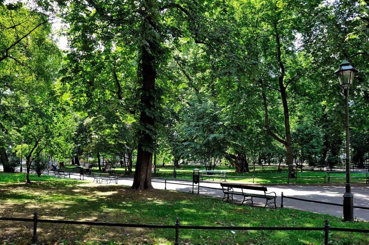Planty park. Fotó: Séta Krakkóban